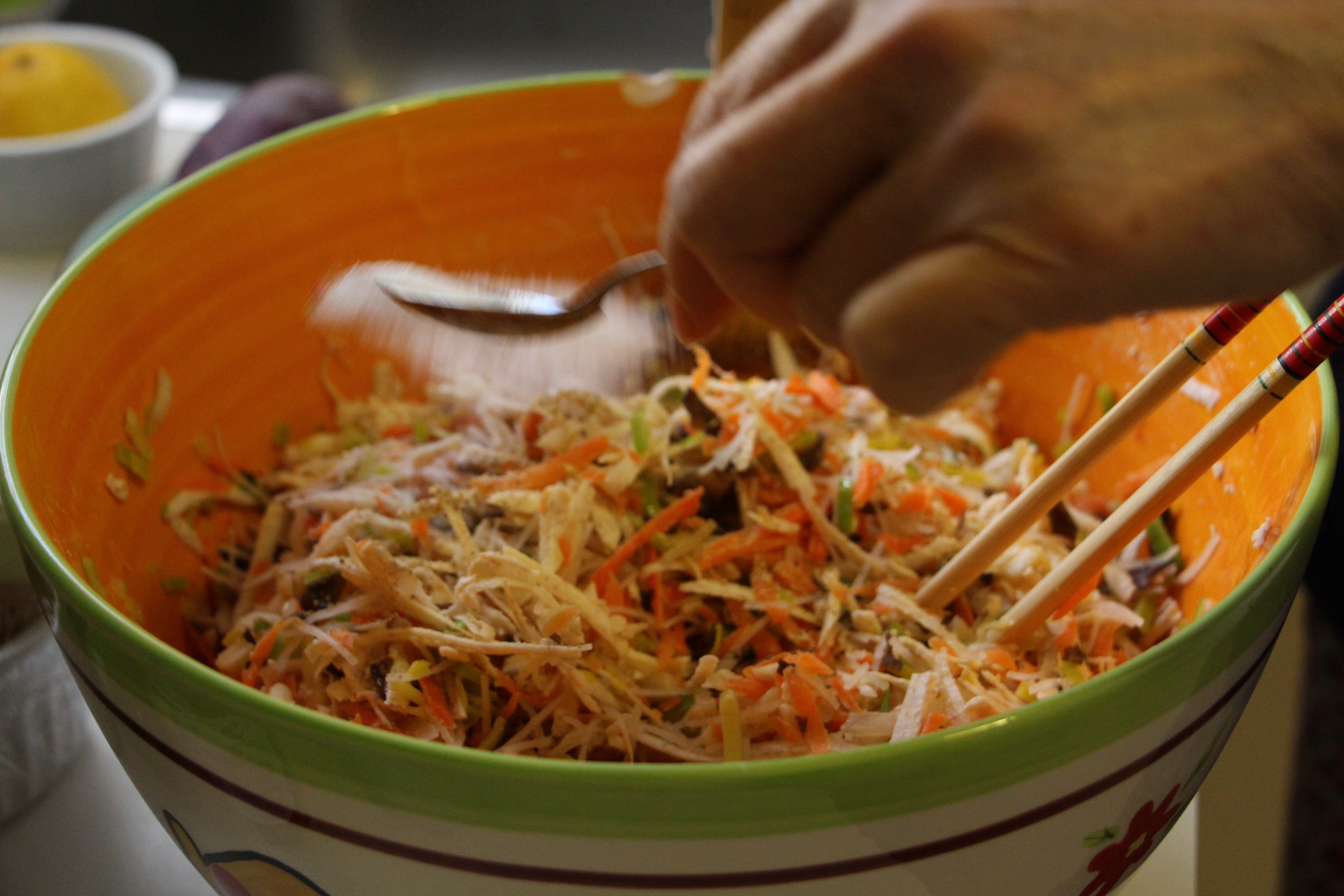 Vietnamese Recipe: Chia Gio, fried rolls – My Lighthearted Kitchen