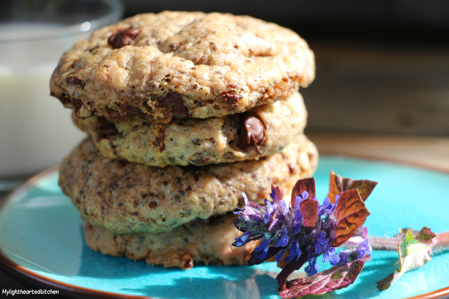 chocolate_oatmeal_cookie