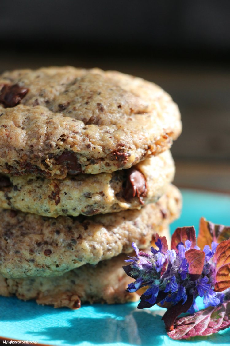 oat_chocolate_cookie